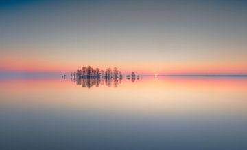 Lake Mattamuskeet Memory, Liyun Yu van 1x
