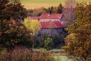 Bauernhof in Epen von Rob Boon