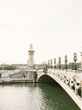 Pont Alexandre-III brug in Parijs, Frankrijk analoog van Michelle Wever