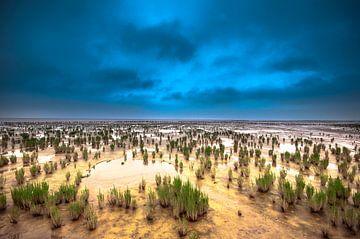 De waddenzee van Marc Hollenberg