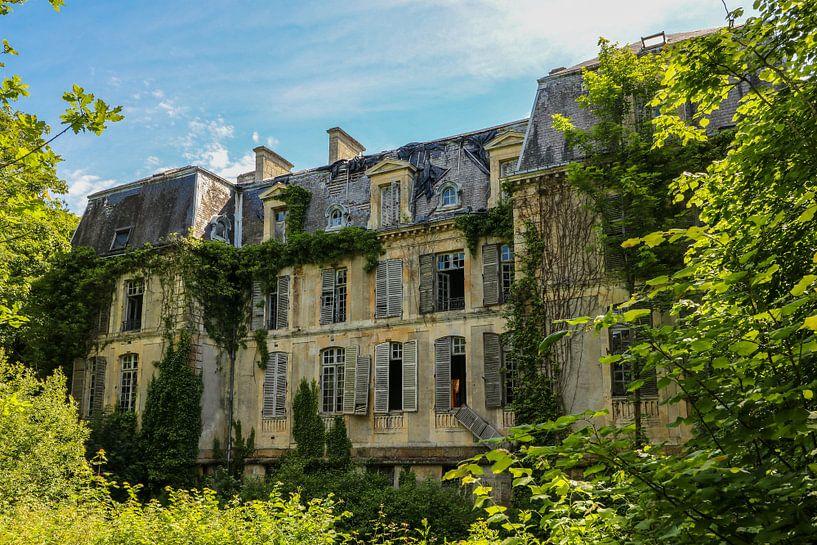 Die Natur übernimmt das Schloss. von Patrick Löbler