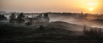 Sonnenaufgang von David Lawalata