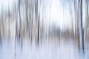 Een abstract landschap in de sneeuw - 25 van Danny Budts