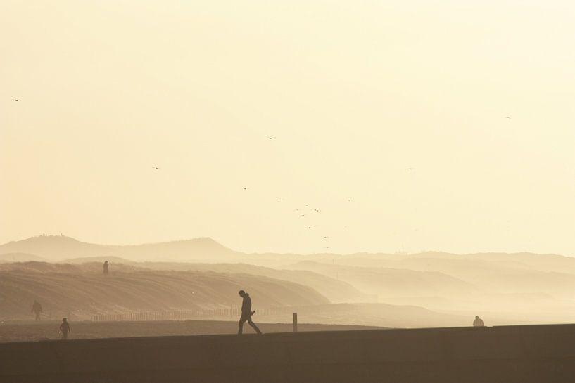 Zonsondergang bij de duinen  van Simone Meijer