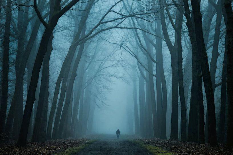 Dark Magic van Martin Podt