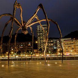 De Bilbaoise spin van Ineke Huizing