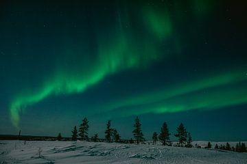 Nordlicht in Finnisch-Lappland || Polarkreis, Finnland von Suzanne Spijkers