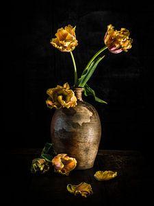 Das Licht einfangen von Miriam Meijer, en plein campagne.....
