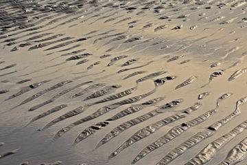 Ondulations dans le sable mouillé