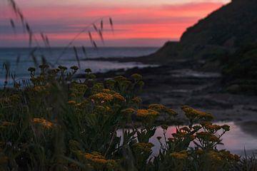 Sonnenuntergang Great Ocean Road Australien 1 von Anouschka Hendriks