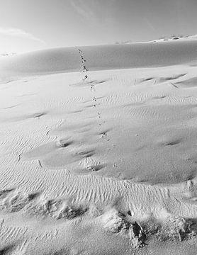 Structuren in het zand van DuFrank Images