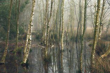 Der ertrunkene Wald von Thijs Kupers