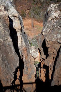 Natuurpark Sierra Norte van Kees van Dun