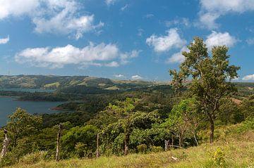 Costa Rica: Lake Arenal van Maarten Verhees