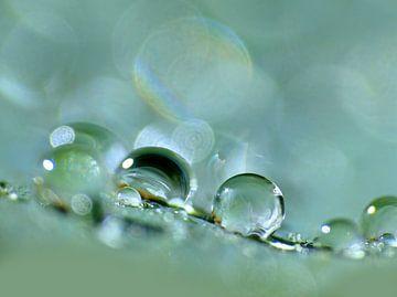 Drop-Zone (Druppels in mintgroen en petrol) van Caroline Lichthart