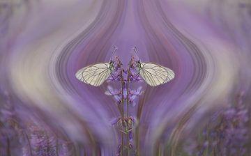 Double butterfly von Ina van Lambalgen