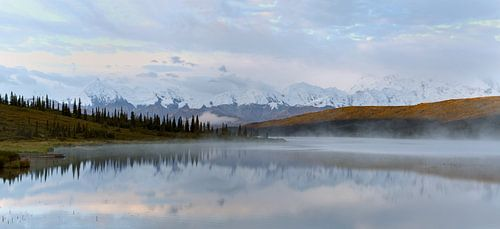 Mount Denali Alaska van
