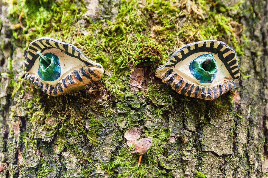 Eik met ogen van Evert Jan Luchies
