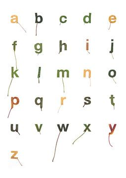 Bladletters binnenvorm alfabet von Twan Van Keulen