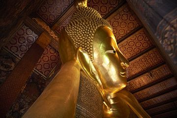 gouden boeddha van Karel Ham
