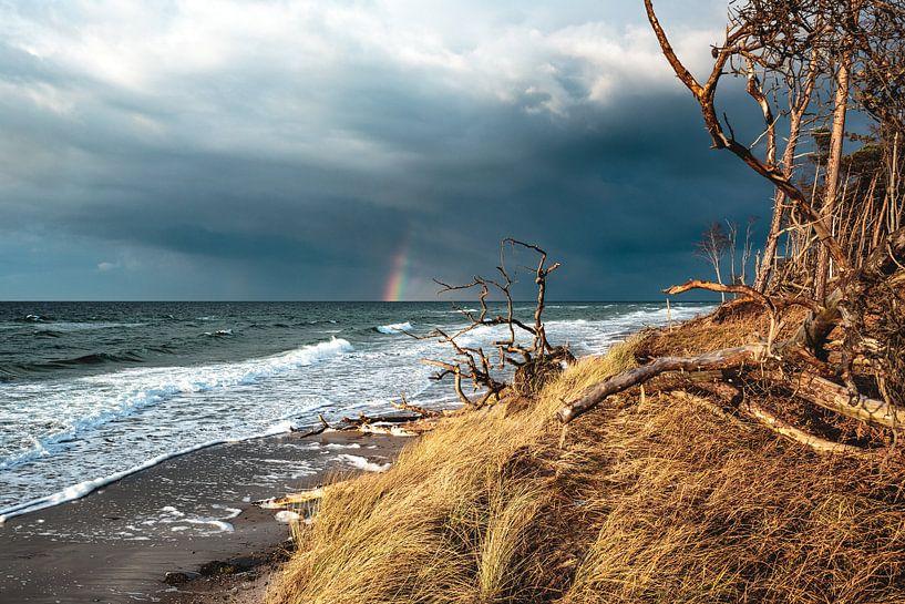 Herbst am Weststrand auf dem Darß von Sascha Kilmer
