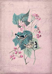 Vogels roos Romantiek van