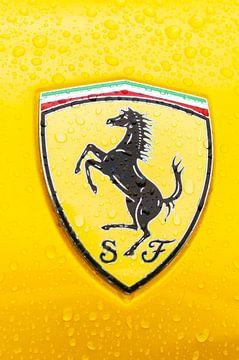 Ferrari badge op een Ferrari 458 Italia sportwagen van Sjoerd van der Wal