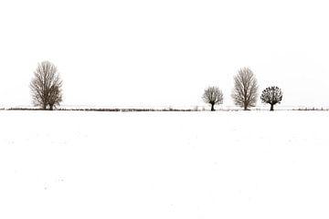 Een serene winterlandschap van R. Maas