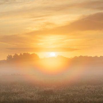 Sonnenaufgang mit Regenbogenkreis von Karla Leeftink