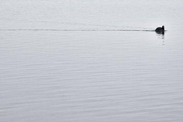 Einsamkeit..... von Nienke Bot
