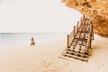 Zanzibar beach van