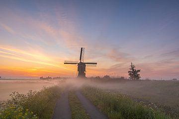 Umgeben von Nebel von Jan Koppelaar