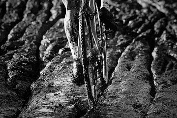 Mud von Herbert Huizer