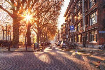 Herfstsferen in Blijdorp, Rotterdam (NL) van Martijn Mureau