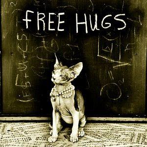 Free hugs van