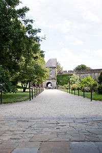 Bad Bentheim van