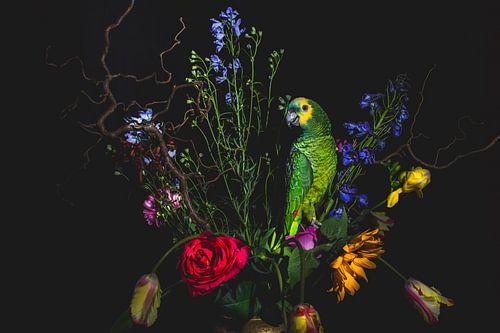 Tulpen en groene papegaai, tulips and green parrot
