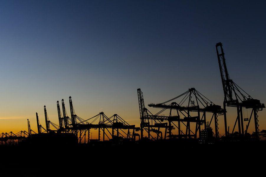 De haven van Rotterdam van Esther Seijmonsbergen