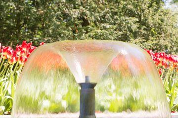 stromende fontein van Valqueira van der Does