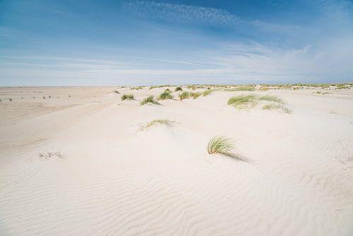 Ervaar het pure eilandgevoel in natuurgebied De Hors, Texel van