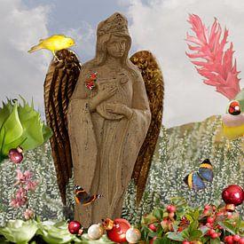 Engel van Cora Unk