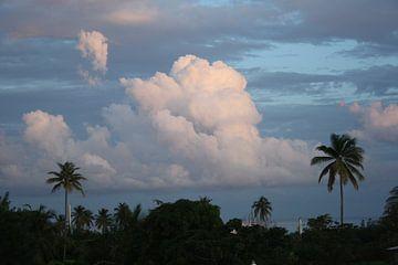 Wolken-Feld in Tobago von Jessica van den Heuvel