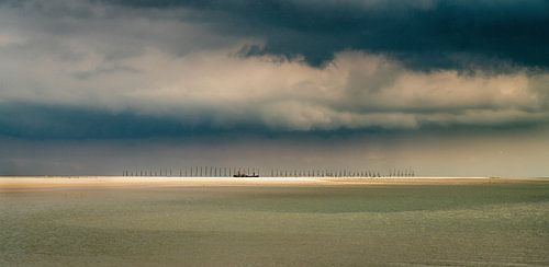 Vliehors - Vlieland
