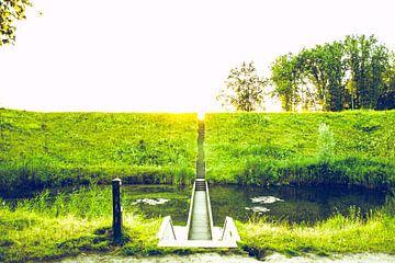 De Mozesbrug, Halsteren van Lars Mol