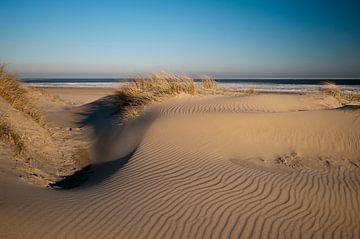 Duinen en zee vanTexel van Ineke Nientied