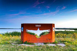 Monument Europese Zeearend in Nationaal park Lauwersmeer