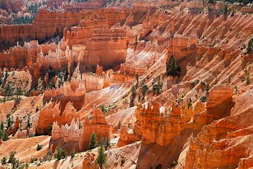 Bryce Canyon von Marit Lindberg