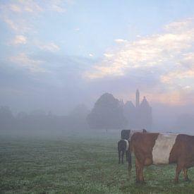 Lakenvelder bij kasteel Doornenburg in de mist van Joyce Derksen