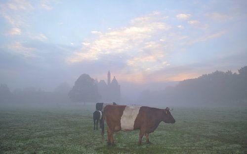 Lakenvelder bij kasteel Doornenburg in de mist