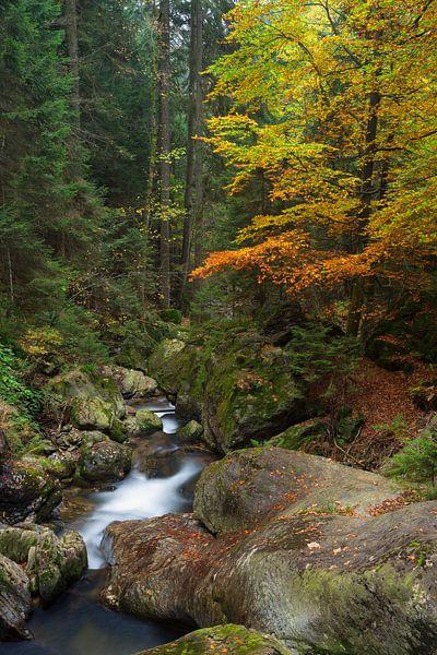 Herfst in Beieren van Rob Christiaans